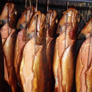 Fiskegrej tilbud ⇒ Finde de bedste tilbud på fiskegrej her